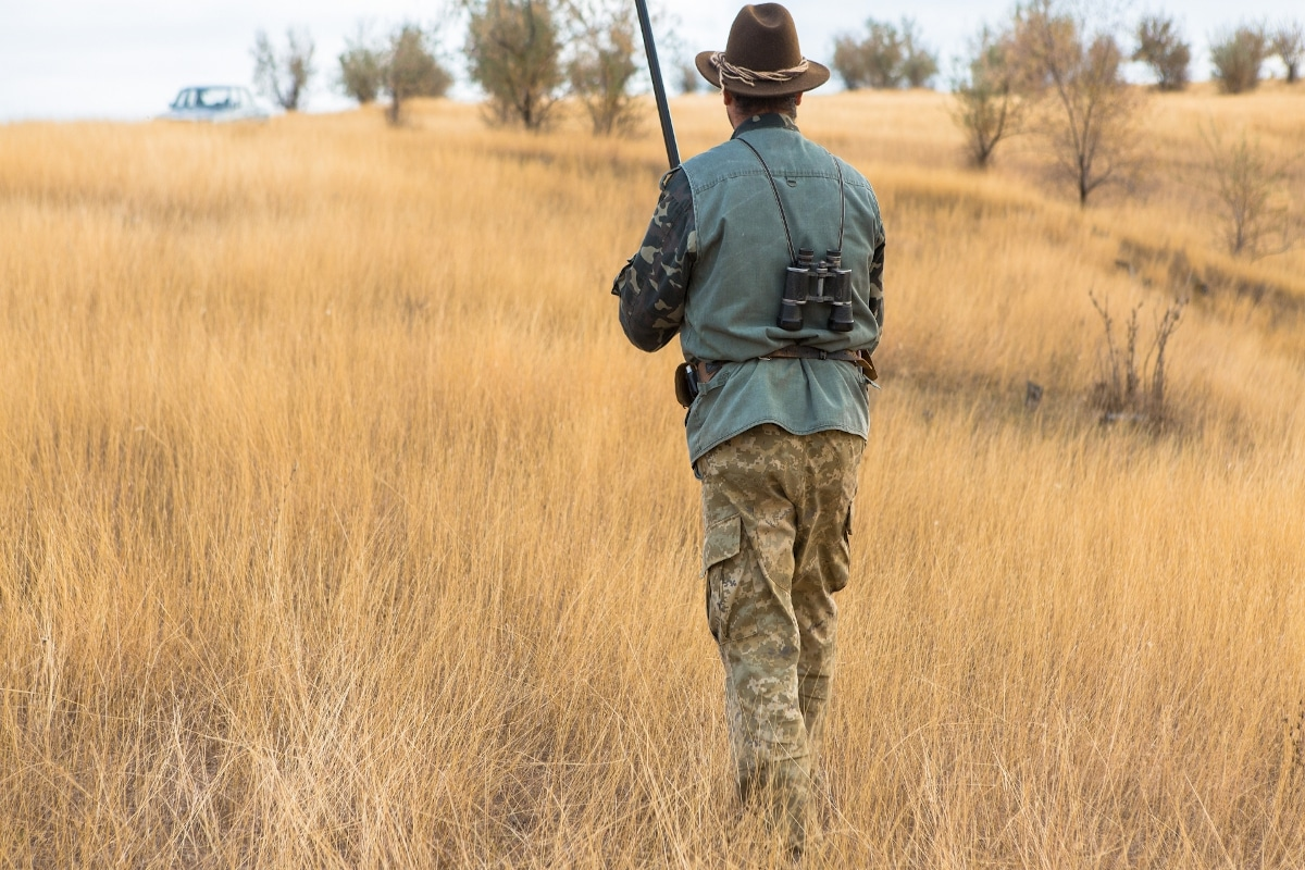 Best Brush Pants For Hunting