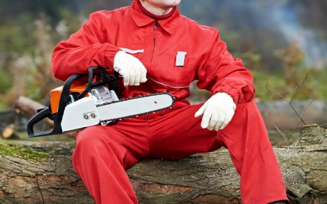 Chainsaw Safety Qualifications