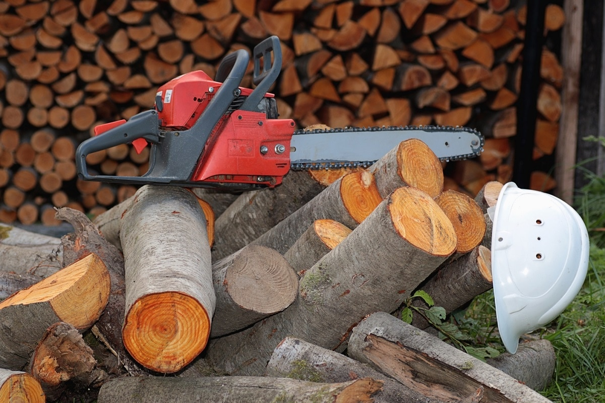 Chainsaw Wood Pile